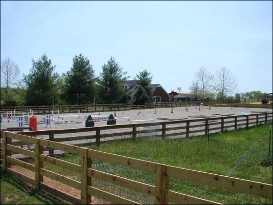 Our new arena at Half Ass Acres Miniature Donkey Farm