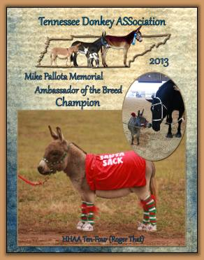 Roger That - 2013 High Point Champion Ambassador Donkey!