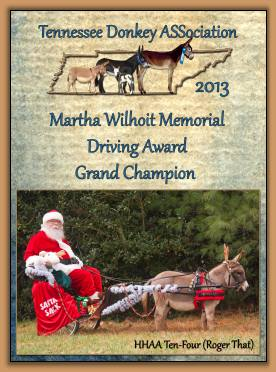2013 Tennessee Grand Champion Driving  Award!