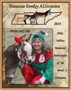 2014 High Point Ambassador Donkey  of Tennessee